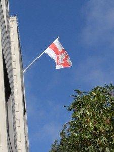 Бел-красно-белый флаг в СФ