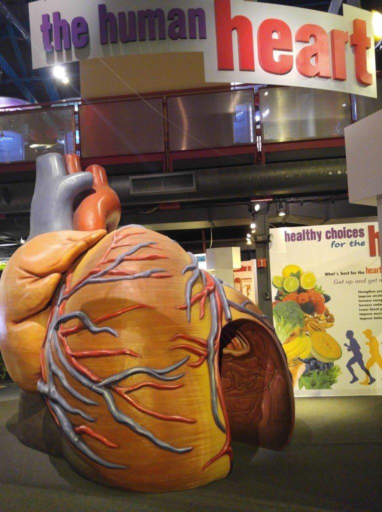 МОСТ 3 Сердце-min